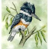 Crossed Wing Collection Stickvorlage Belted Kingfisher