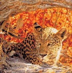 Kustom Krafts Stickvorlage Hiding Leopard