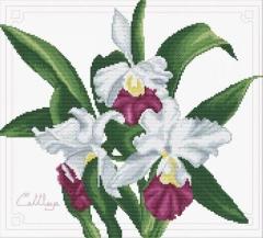 Needleart World Stickpackung 340-009 Orchideen 33x29