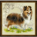 Sheltie - Stickpackung Riolis
