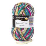 Schachenmayr Bravo Color 02084 Jeans Jacquard Color