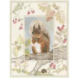 Bothy Threads Stickpackung Red Squirrel