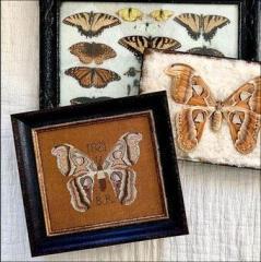 Kathy Barrick Stickvorlage B.R.s Moth